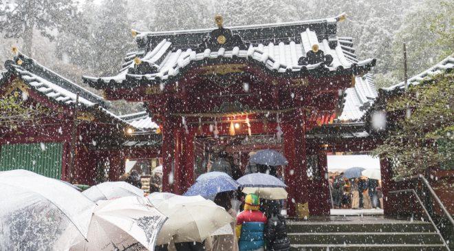 2017年の初詣は雪の中の箱根神社 2017 New Year Visit to Snowing Hakone Shrine