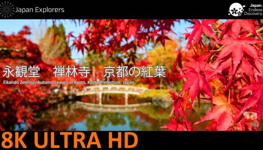 動画で国内旅行 京都府 永観堂禅林寺 Eikando, Kyoto