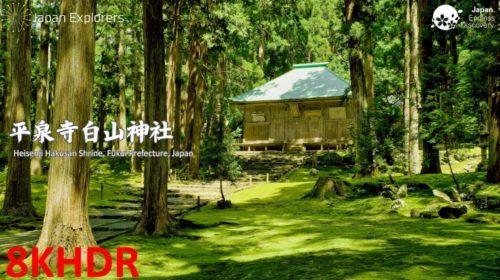 動画で国内旅行 福井県 苔の名所 平泉寺白山神社, Heisenji Hakusan Shrine, Fukui